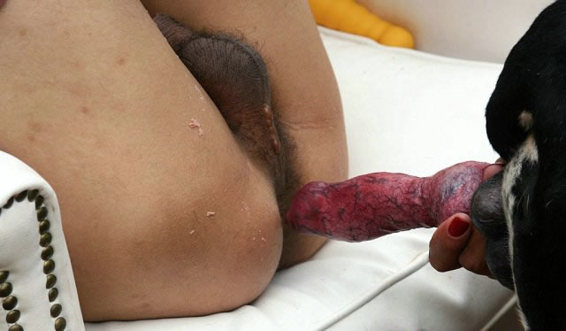 Anal gay sperm movies and ful faking sex 7